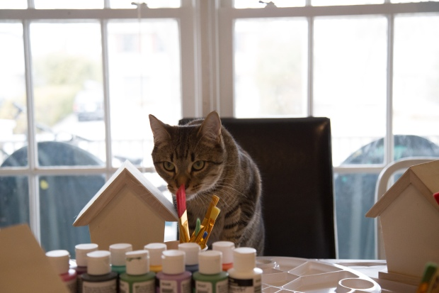 Even Pete wanted in on the painting party action. Until the kids started showing up, that is...